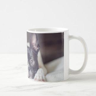Mug Fina Boston Terrier