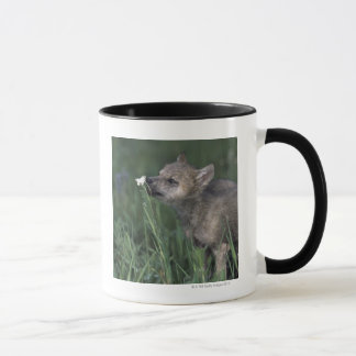 Mug Fleur sauvage de montagne de reniflement de chiot