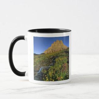 Mug Fleurs sauvages alpins et Mt Clements au passage