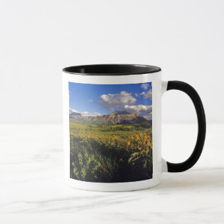 Mug Fleurs sauvages de balsomroot d'Arrowleaf dans