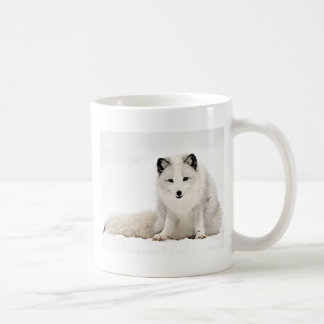 Mug Fox arctique dans la neige
