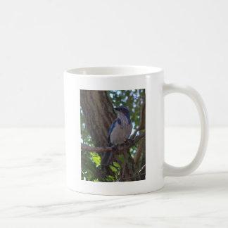 Mug Frottez le geai