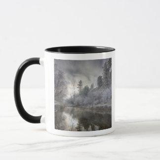 Mug Gelée le long d'une mue à l'île de Kelly