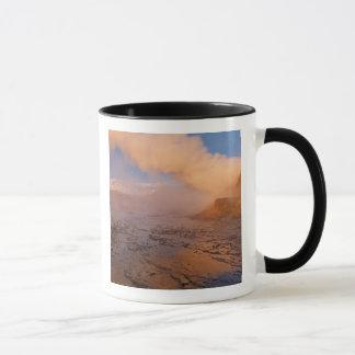 Mug Geyser de mouche dans le désert noir de roche