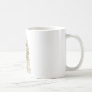 Mug Gingembre de Labradoodle