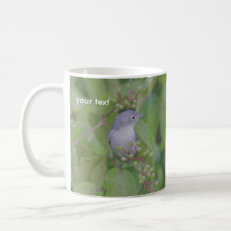 Mug Gnatcatcher Bleu-gris