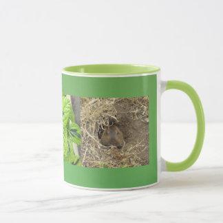 Mug Gopher de la Californie