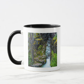 Mug Gorge de Sunrift en parc national de glacier,