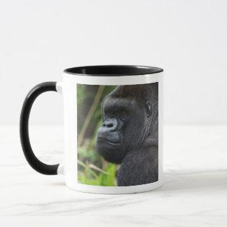 Mug Gorille de plaine de Silverback, captif de gorille