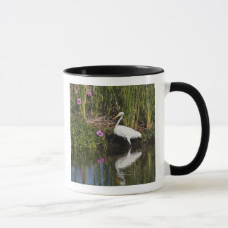 Mug Grands poissons de chasse de héron dans le marais