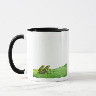 Mug Grenouilles vertes sur le congé