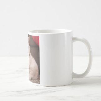 Mug Gros chat