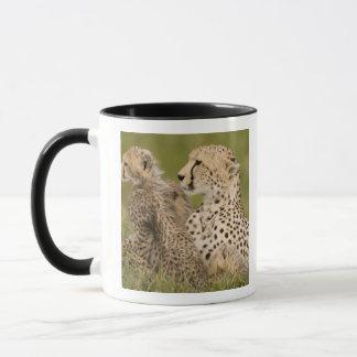 Mug Guépard, jubatus d'Acinonyx, avec l'petit animal