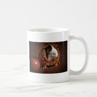 Mug guinea pigs