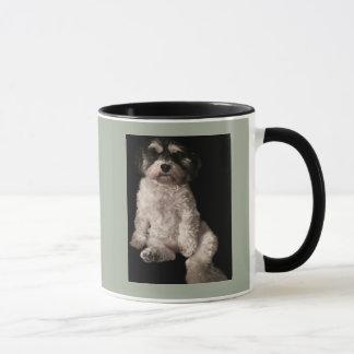 Mug Havanese-mettez l'image de votre chien ici