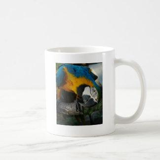 Mug ici vous regarde