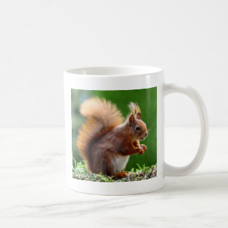 Mug Image mignonne d'écureuil