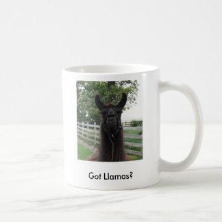 Mug IMG_0677, obtenu des lamas ?