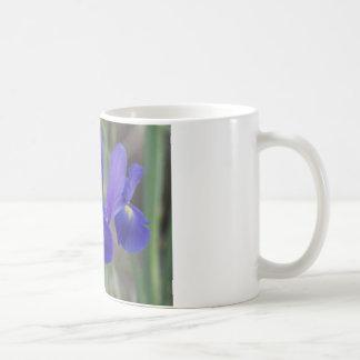 Mug irispurple