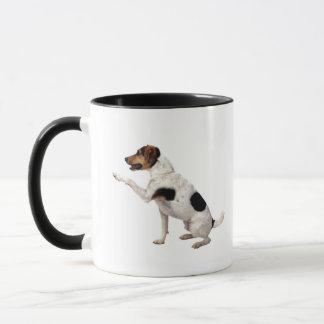 Mug Jack Russell Terrier soulevant la patte