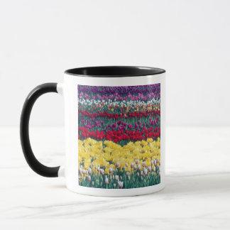 Mug Jardin d'affichage de tulipe dans le comté de