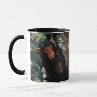 Mug Jeune chimpanzé accrochant à la forêt