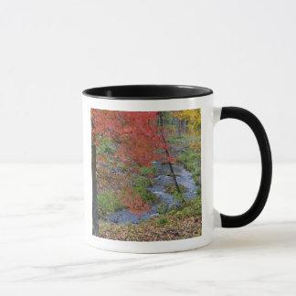 Mug La crique de Coles a garni des arbres d'érable