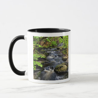Mug La crique traverse la forêt