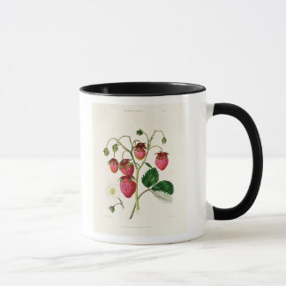 Mug La fraise de Roseberry, gravée par Watte