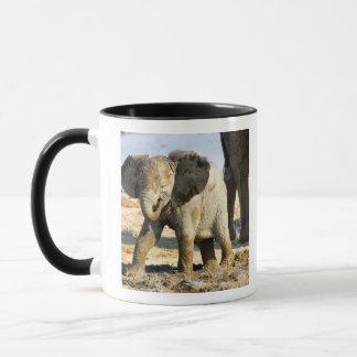 Mug La Namibie, Afrique : Éléphant africain de bébé