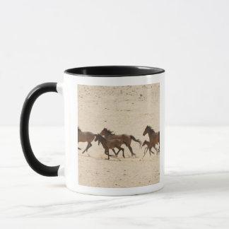 Mug La Namibie, Aus. Groupe de courir les chevaux