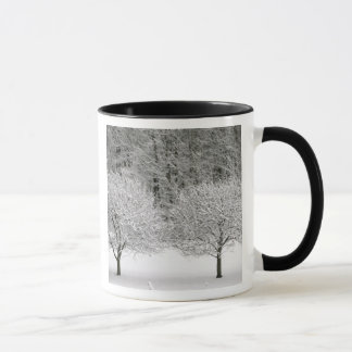 Mug La neige a couvert le paysage