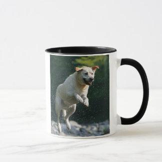 Mug Labrador retriever d'or sautant dans la rivière
