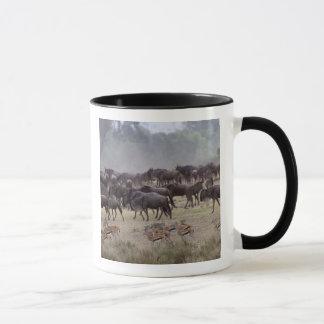 Mug L'Afrique, Kenya, masai Mara. Troupeaux de