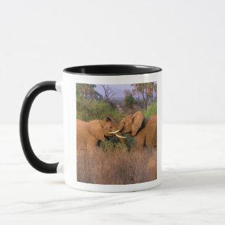 Mug L'Afrique, Kenya, Samburu. Défi d'éléphant