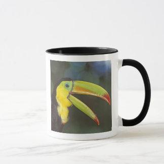 Mug L'Amérique Centrale, Costa Rica. Quille-affiché