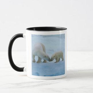 Mug L'Amérique du Nord, Arctique canadien. Ours blanc