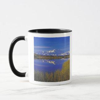 Mug L'Amérique du Nord, Etats-Unis, Alaska, Denali NP,