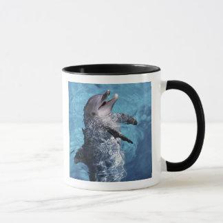 Mug L'Amérique du Nord, Etats-Unis, Hawaï. Dauphin 2