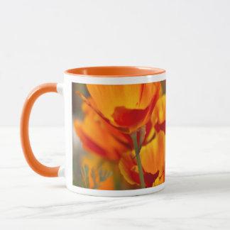 Mug L'Amérique du Nord, Etats-Unis, Washington,