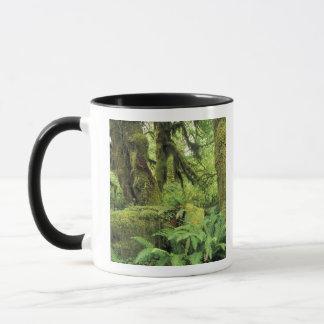 Mug L'Amérique du Nord, Etats-Unis, Washington, 3