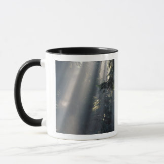 Mug L'Amérique du Nord, Etats-Unis, Washington, NP