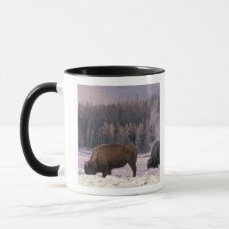 Mug L'Amérique du Nord, Etats-Unis, Wyoming,