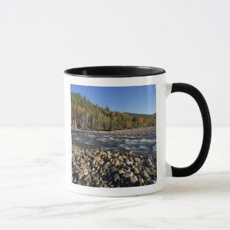 Mug L'Amérique du Nord, USA, NH, plage de pavé d'A sur