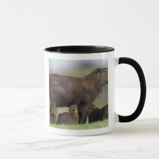 Mug L'Amérique du Sud, Brésil, Capybara de Pantanal