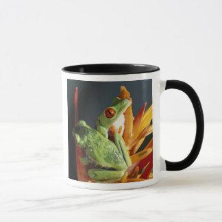 Mug L'Amérique du Sud. Grenouille d'arbre aux yeux