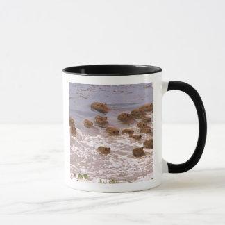 Mug L'Amérique du Sud, Venezuela, région de Llano