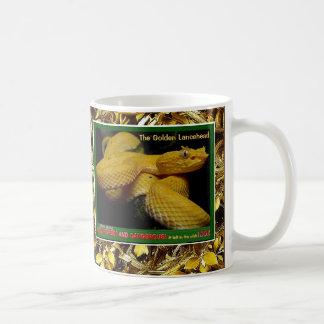 Mug Lancehead d'or est un serpent mis en danger -