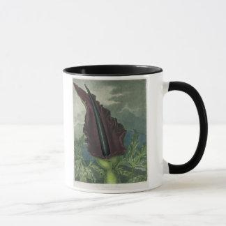 Mug L'arum de dragon, gravé par la salle, 'du Templ