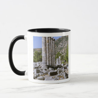 Mug L'Asie, Moyen-Orient, Turquie, Ephesus. Temple de